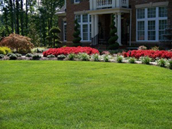 landscape contractors seeding landscapes landscape lighting
